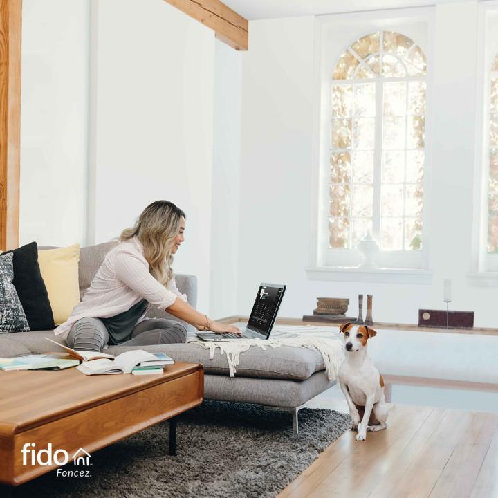 Mobile app developer Fido in Quebec City (QC) | WebMetric